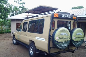 Car Rental, Toyota Land Cruiser (6-pax)