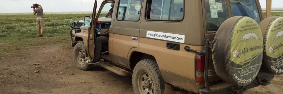 Wonder and Dream in the Wild Tanzania in your Own Rented 4x4 Drive