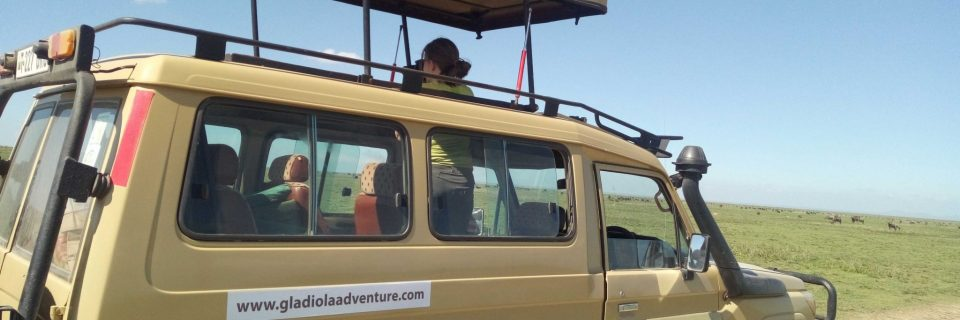 TOYOTA LAND-CRUISER 4PAX, THE 4X4 FOR THE WILD EAST AFRICA.