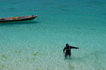 8 nights in a historic Zanzibar's pristine beaches